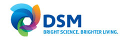 DSM NUTRITIONAL PRODUCTS FRANCE